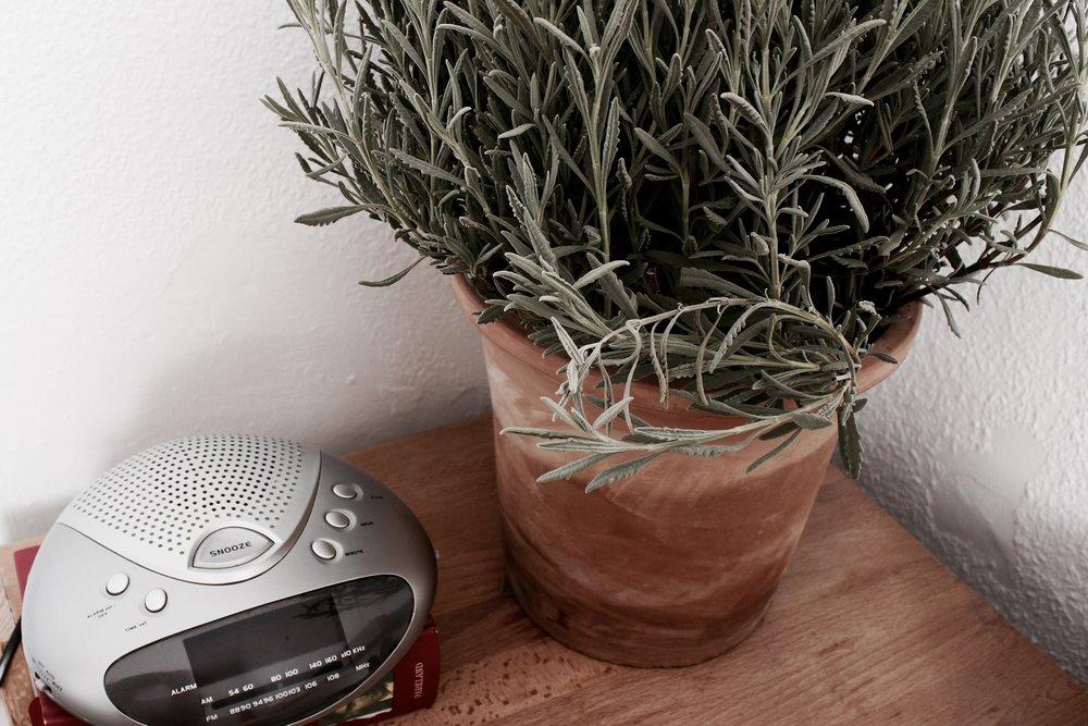 lavender plant bedside table