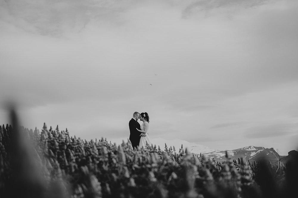 linnsejphotography_brollopsfotograf_brollop_fotograf_halmstad_island_weddingphotographer_022.jpg