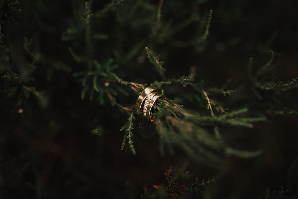 Bild på vigselringar i guld med diamanter