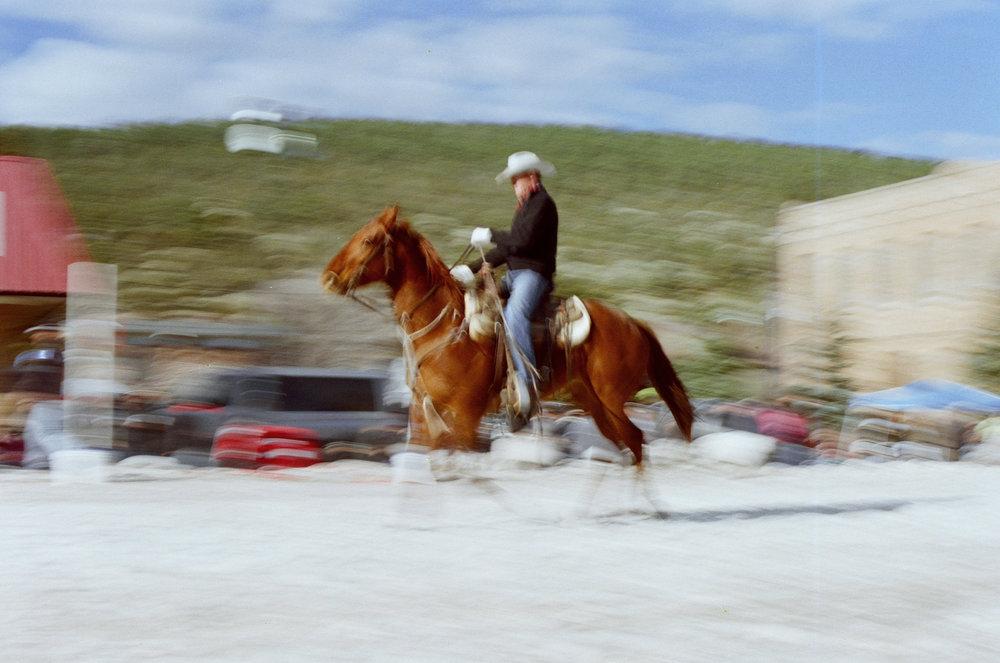 Cowboy_WhiteWoodFrame.jpg