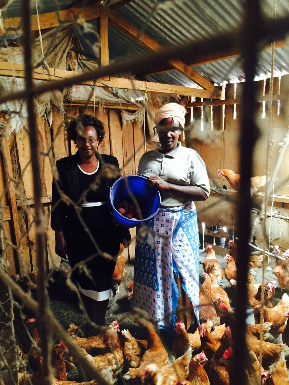 Magistrate oversees a CSO poultry project