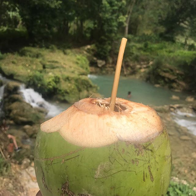 Coconut water wash off yuh heart.  #dacingcoconuts 🥥🌴 . . . #jamaica #adventures #riveradventures #coconutwater #explore #blackgirlstraveltoo #goodvibes #myplace #sippinlive