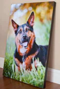 Canvas Gallery Wraps - Canvas Gallery Wraps are a great way to give your home some extra character! The image is printed on premium canvas and wrapped around 1.5