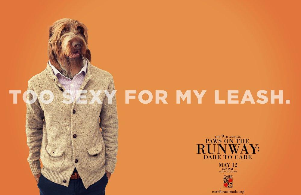 Paws on the Runway HENRY FINAL pdf-1.jpg