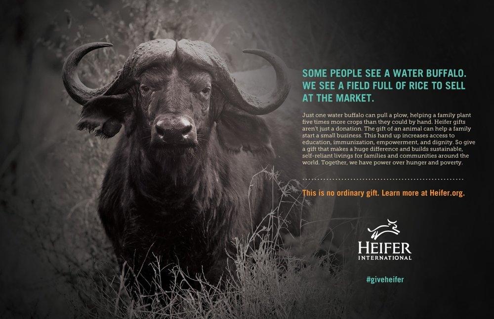 HEIF-Drama-Buffalo-2016-2.jpg