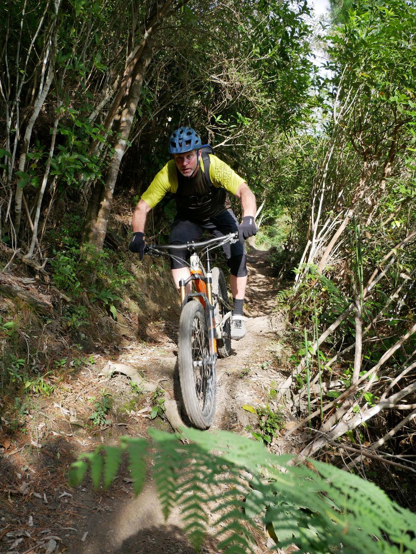 Te Ara Koa trail is a hand built advanced trail (grade 4)