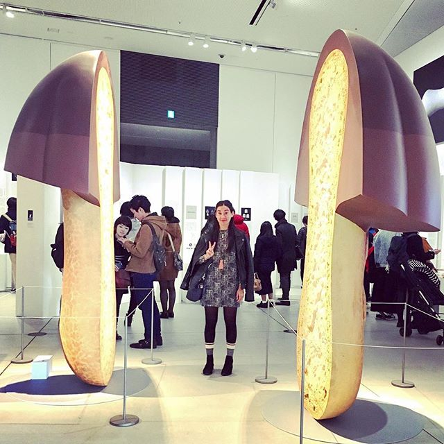 If only the real Kinoko No Yama were this big 🍫🍄 #japanesesnacksrule #tokyo #japan