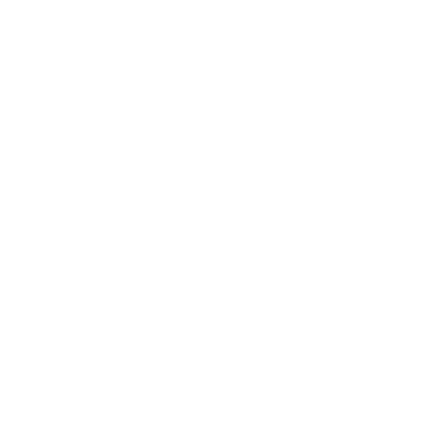 Whirlwind Performance Horses