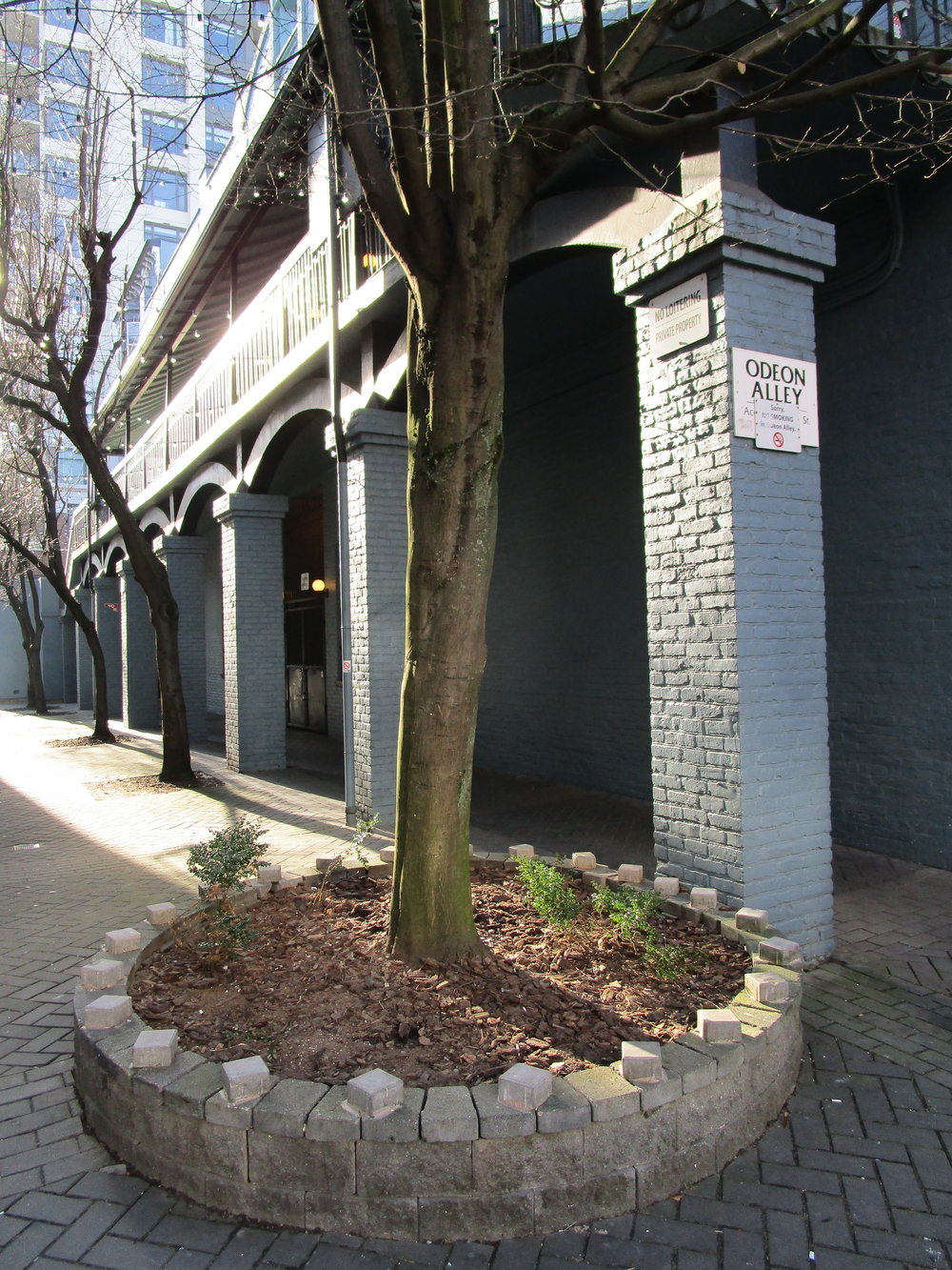 Different parts of Odeon Alley are owned by Cineplex Odeon, Concert Properties, and the City of Victoria.