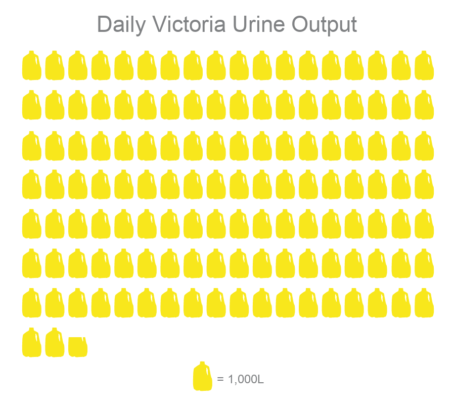 Victoria's daily urine output, 128,688 litres, presented as a yellow milk jug infographic.