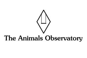 Animals Observatory