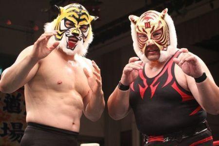 tiger-masks.jpg