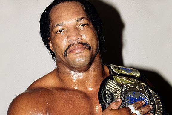Ron_Simmons_Bio_0001_crop_north.png