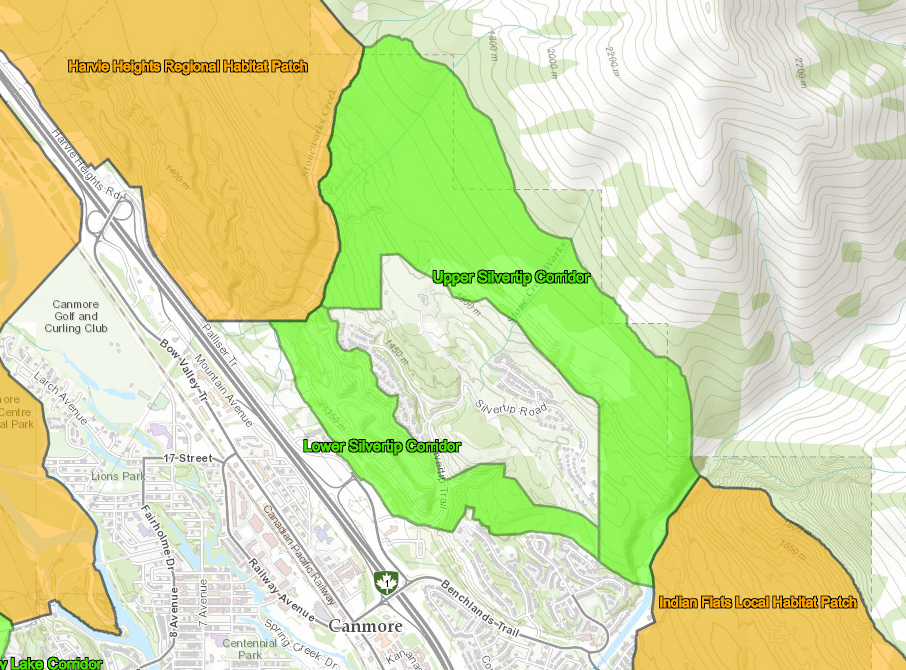 Map showing designated wildlife corridors and habitat patches at Silvertip. Click to enlarge.