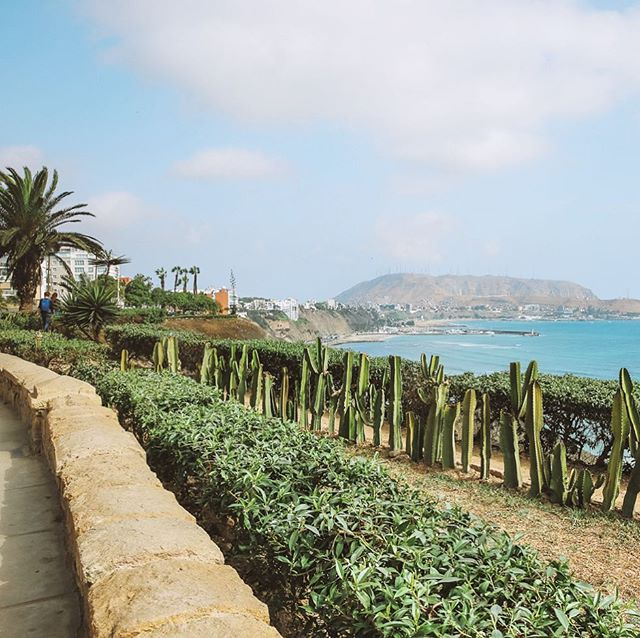 La Costa Verde 🌴