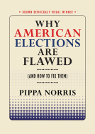 Why American Elections are Flawed.jpg