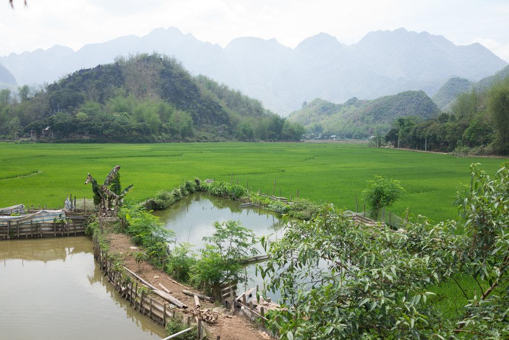 love-the-locals-vietnam-mai-chau-apr-2017_0124.JPG