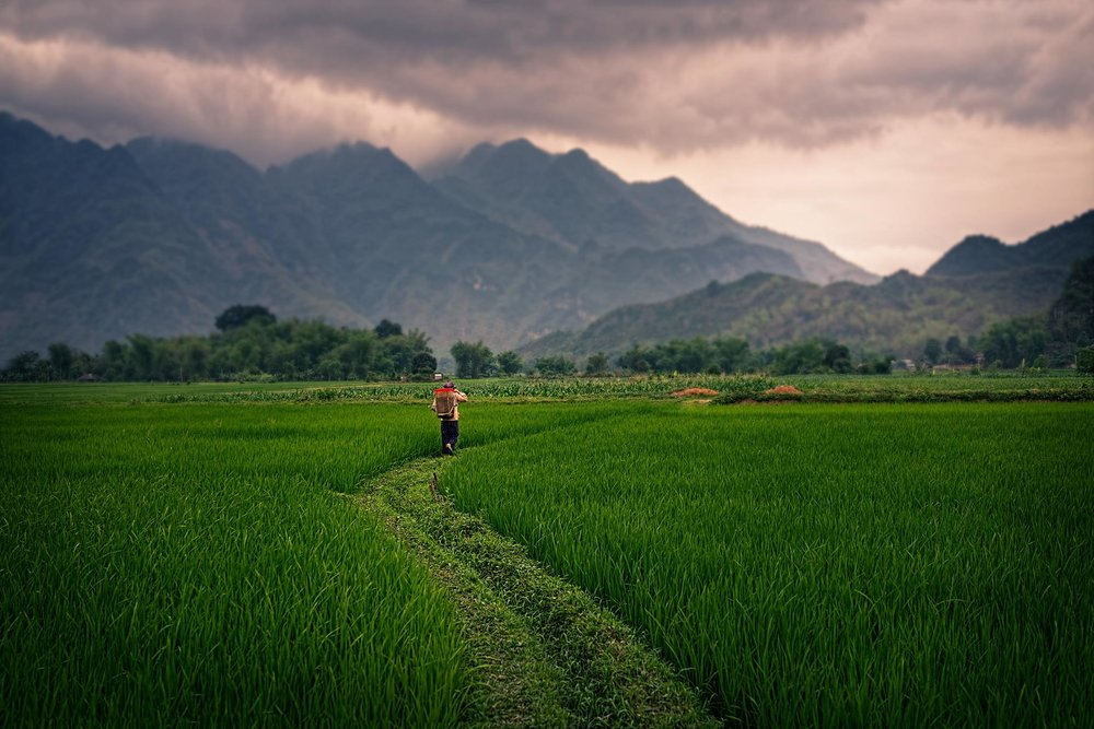 MAI CHAU VIETNAM | SEPT. 2 - 9th 2019 EXPERIENCE - $1125.00RESERVE NOW$1125.00 includes entire Mai Chau experience.