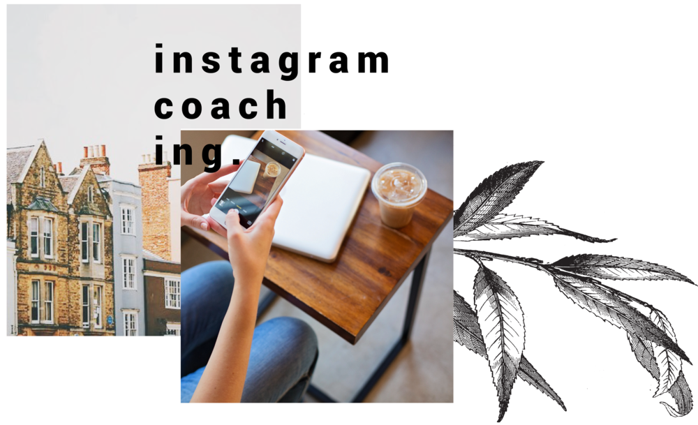 Kari Olson Co. Instagram Coaching