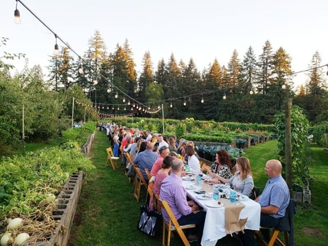 Currently day dreaming about our 2019 line-up... Head to the link in our bio to grab your tickets for 15% off!  #gatherings#localgathering #portlandgathering#dinnerinthefield #farmdinner#farmdinners #freshdinner#farmtotable #farmtotabledinners#onthetable #vineyard#local#localeats #portland#oregon#pnw#portlandevents#oregonvineyards #winecountry#oregonwinecountry #traveloregon#shareyourtable #fellowmag#storyofmytable #buzzfeast#bonappetitmag #foodietribe #fialafarms #portlandfamrs #oregonfarms