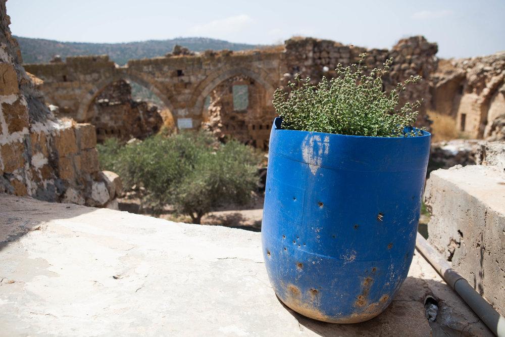 Make Eat_Mediterranean_Biennale_9