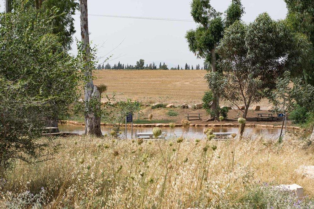 Park Emek Ha-Maayanot, springs valley, pond and trees