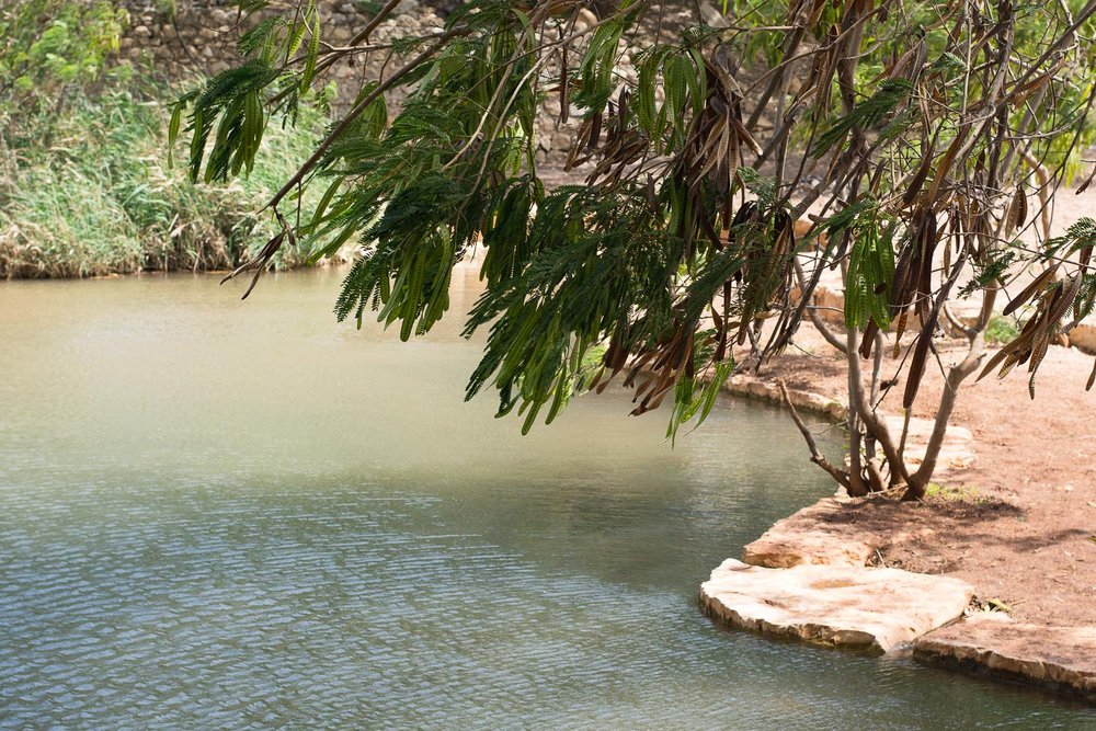 Park Emek Ha-Maayanot, springs valley, pond
