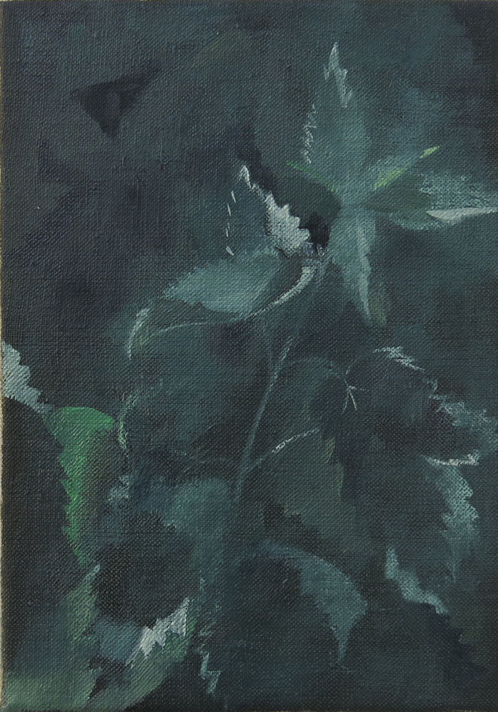 Dark Nettle    2018, oil on linen, 21 x 15cm