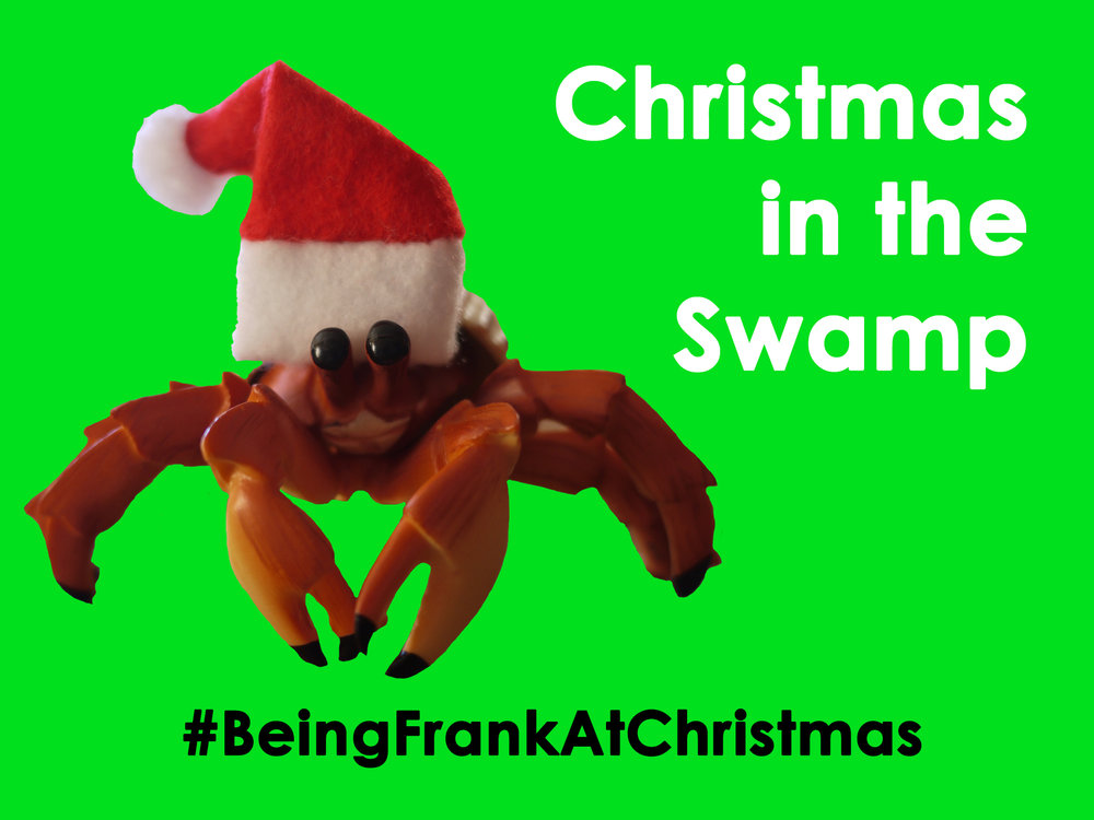 Christmas in the Swamp Front Cover.jpg
