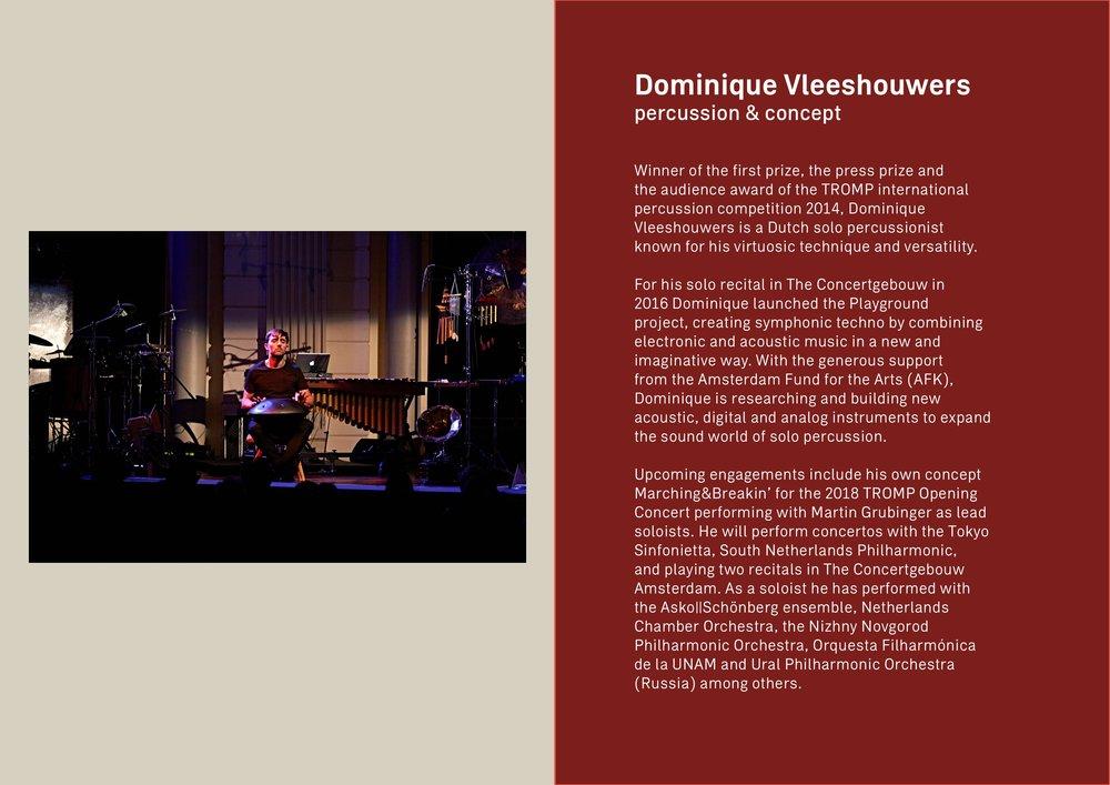 1. Visiting Beethoven - Vleeshouwers-page-005.jpg