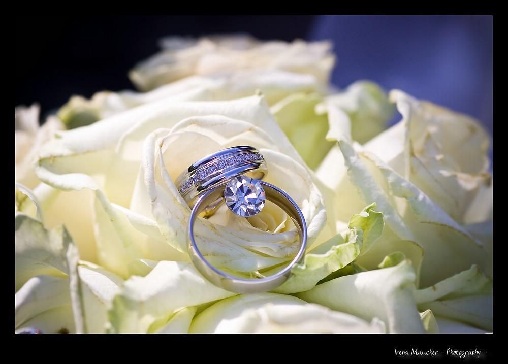 weddingmemoriessk-20090830-161049
