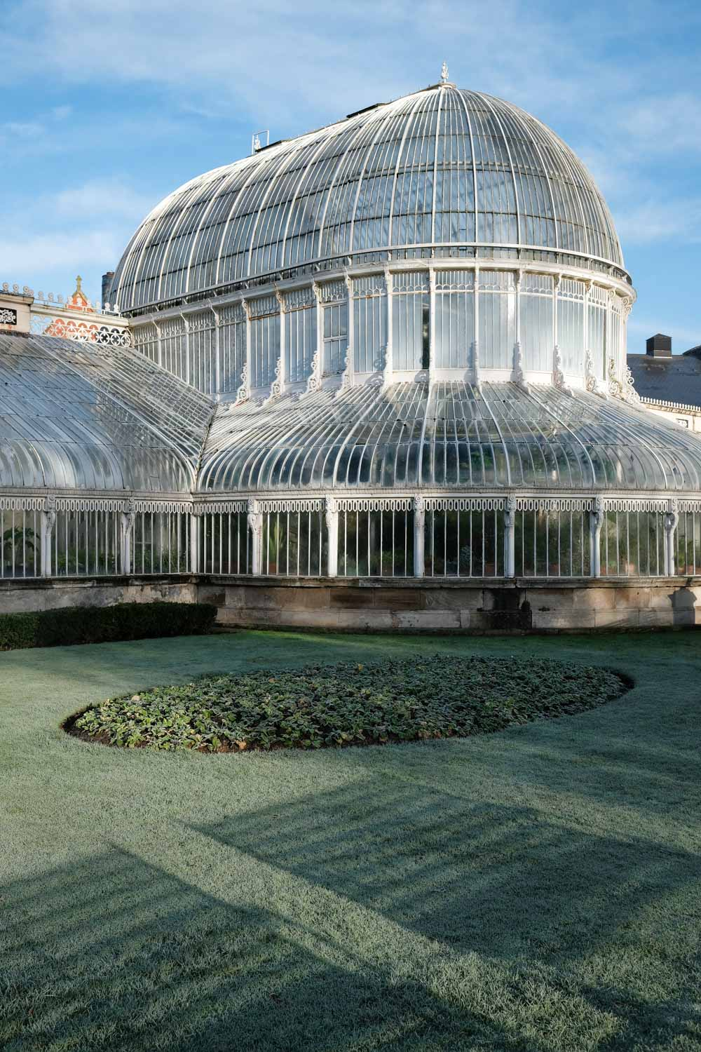 Palm House, the Queen's Quarter