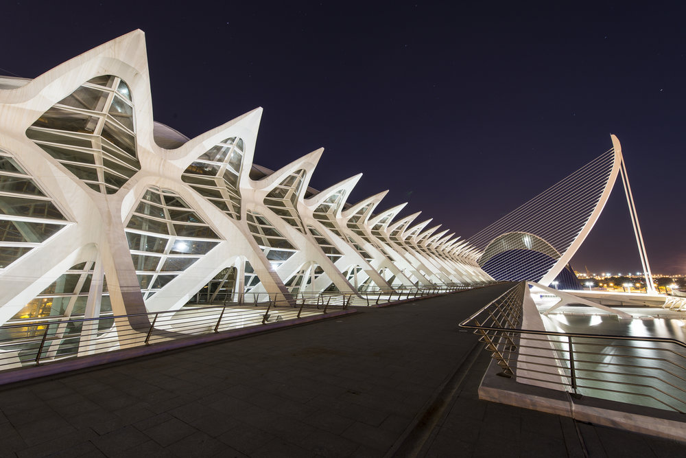 City of Arts and Sciences - Santiago Calatrava - Valencia Spain for ANWB Reiz& magazine