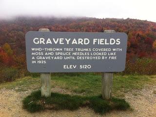 Graveyard-Fields-2.jpeg