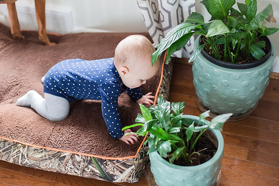9_month_crawling_child_proofing_0004.jpg