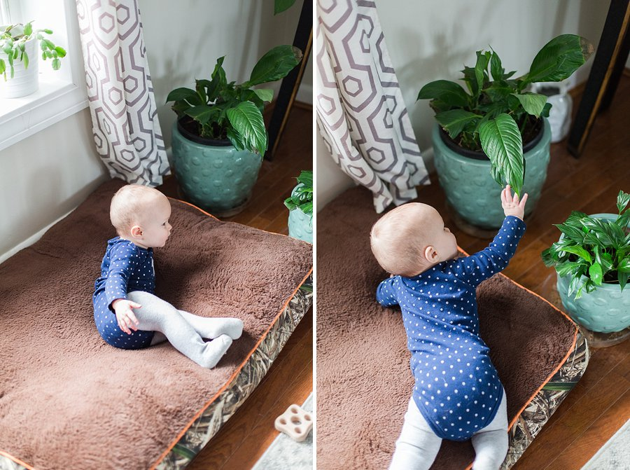 9_month_crawling_child_proofing_0005.jpg