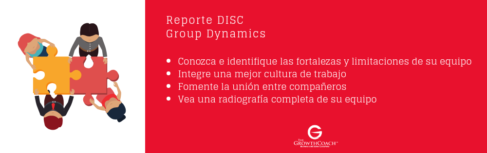 DISC Assessment para grupos (2).png
