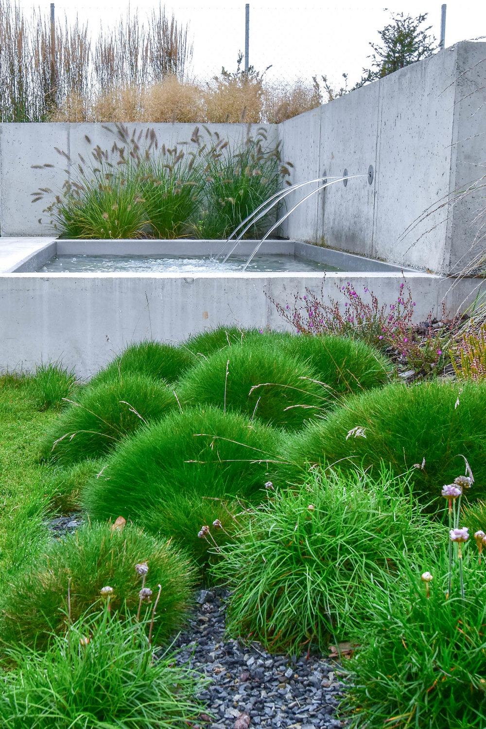 zahrada_kontrastu (17).jpg