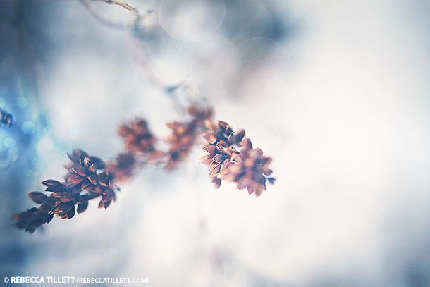 2014_01_11-BLOG.jpg
