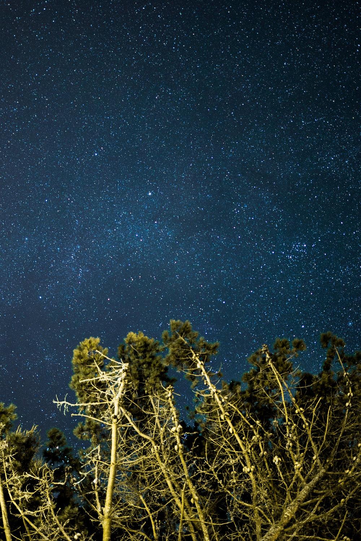 Castle Stars-3.jpg