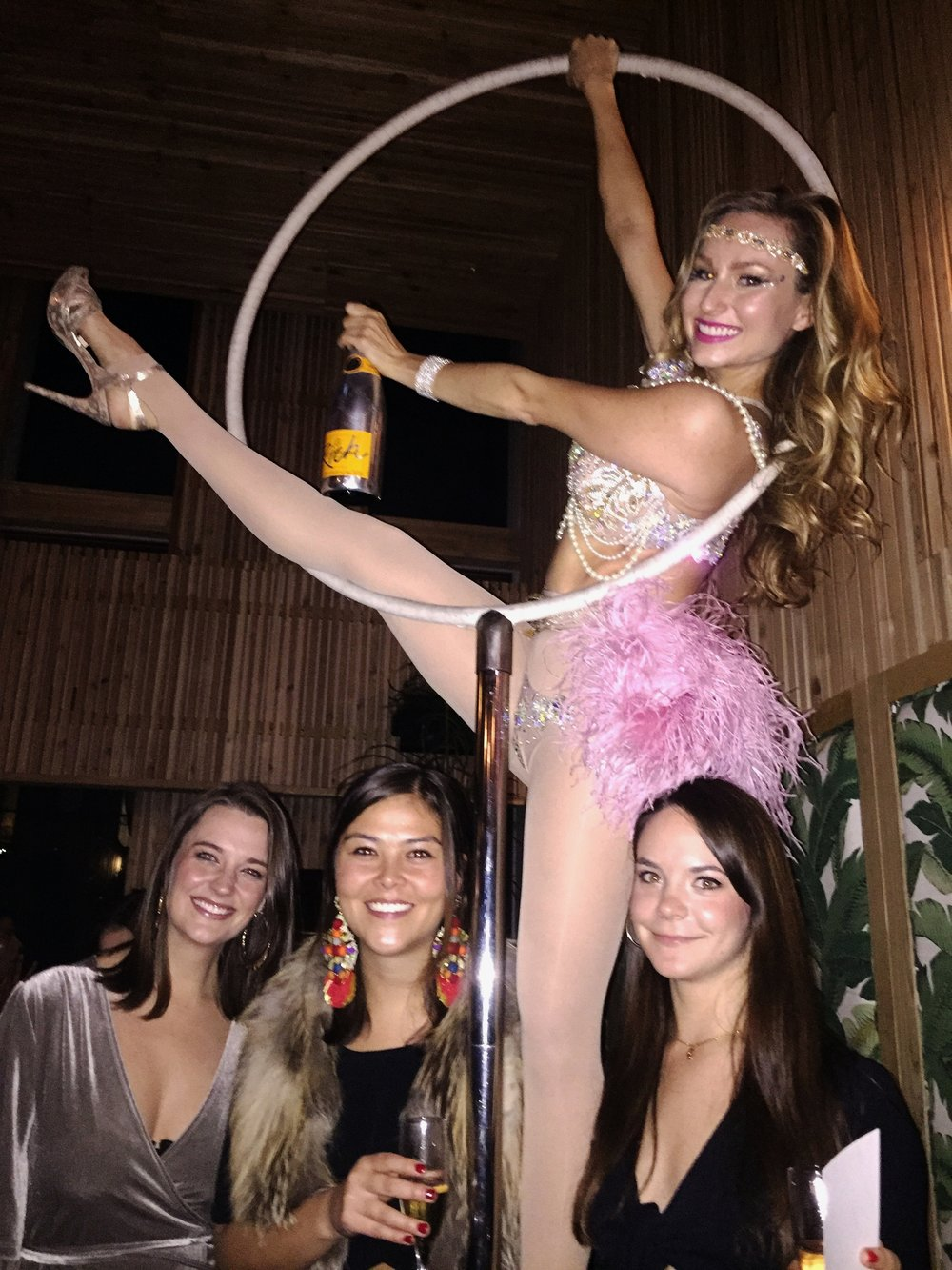 Free Standing Aerial Hoop for Glossier Holiday Party