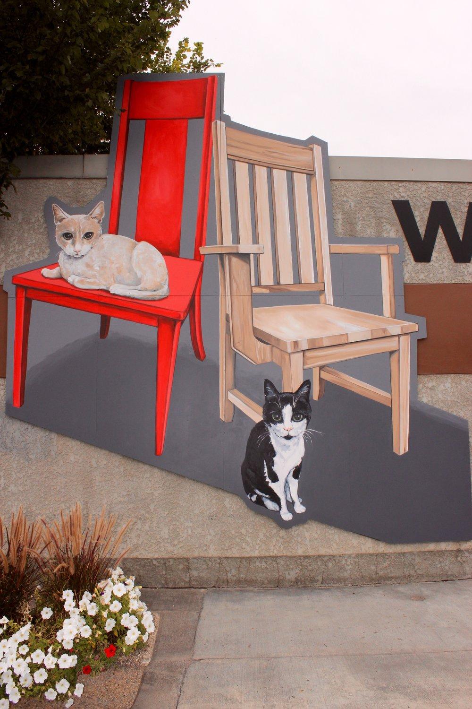 Faveri's Cats!