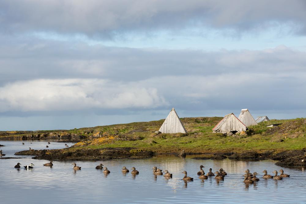 Vegaøyan verdensarv (2004)