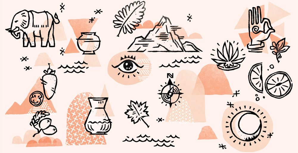 lotus_pops-illos_sketches-collage.jpg