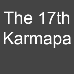 c- 17th karmapa.jpg