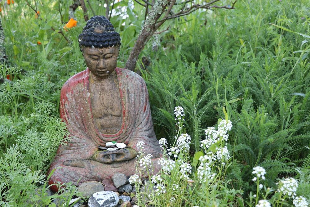 Digital Mindfulness - Garrison Institute blog, Spring 2018