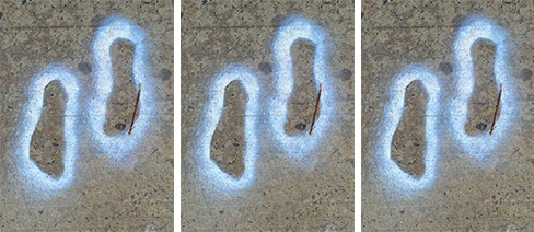 WCS+Social+Good+3+footprints.jpg