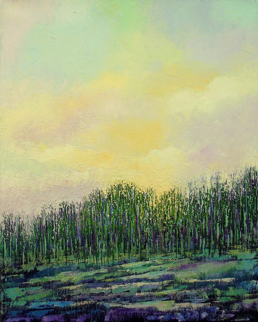 Landscape #742<br>16 X 20