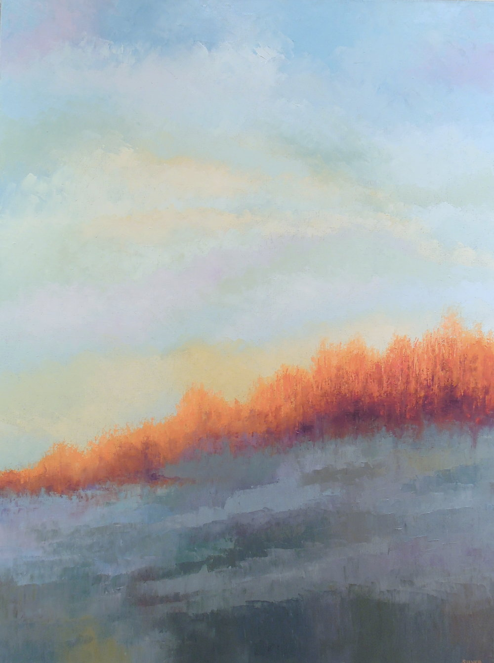 Landscape #745<br>30 X 40