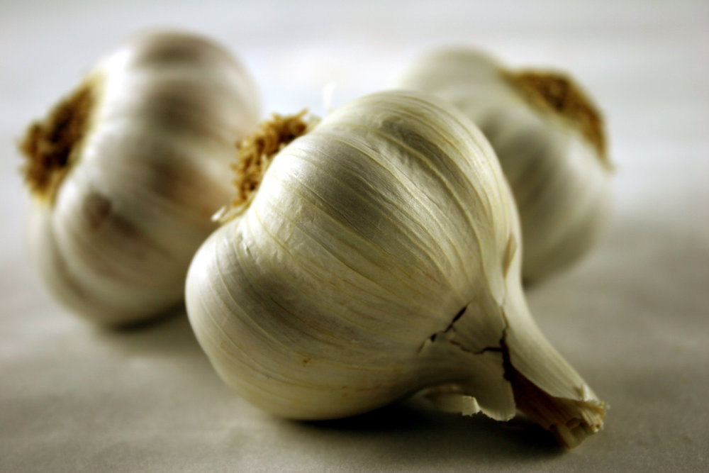 garlic6.jpg